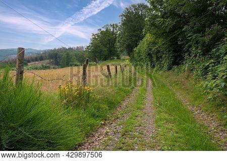 Long Distance Hiking Trail Bergischer Panoramasteig, Bergisches Land, Germany