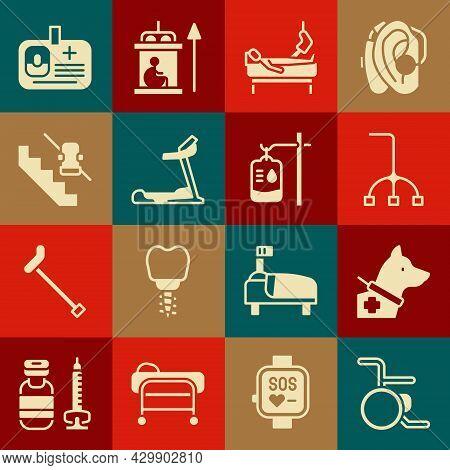 Set Wheelchair, Guide Dog, Walking Stick Cane, Patient With Broken Leg, Treadmill Machine, Disabled