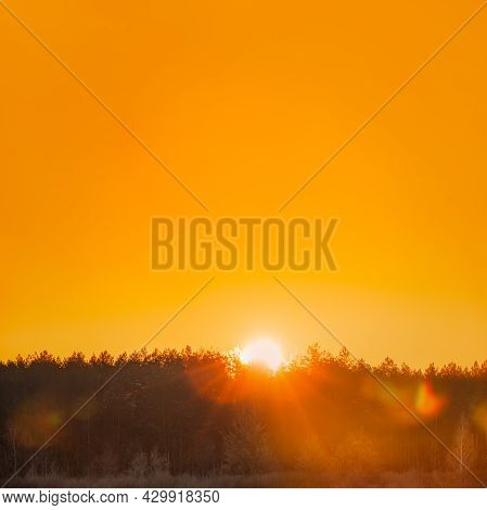 Sun Over Horizon Woods Or Forest With Orange Sunset Sky. Natural Colors Of Evening Sky At Sunset. Na