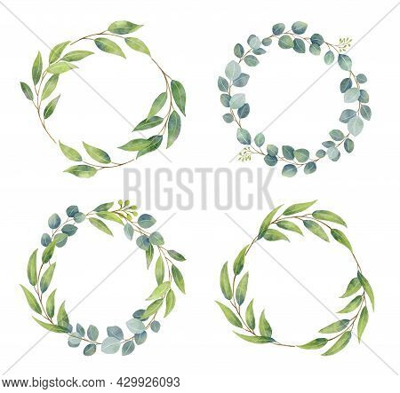 Eucalyptus Branches Wreaths With Watercolor Style.  Wedding Greenery In Circle Decorative Design Ele