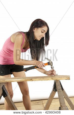 Young Woman Hammering Nail Into Wood