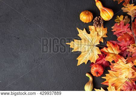 Autumn Thanksgiving Day Background With Decorative Pumpkins And Maple Leaves On Black Background Top