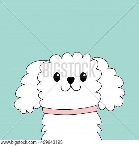 Maltese Dog Puppy Face Head. White Lapdog. Animal Icon Set. Cute Kawaii Cartoon Funny Character. Pet