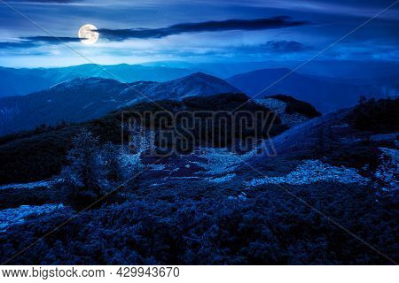 Mountain Landscape In Autumn At Night. Wonderful Nature Scenery In Full Moon Light. Stones And Plant