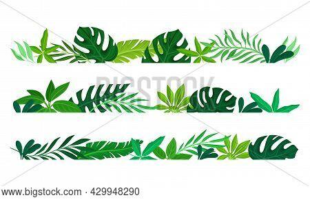 Summer Tropical Leaves Borders Set. Rainforest Foliage Frame Template. Invitation, Greeting Card, Po