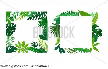 Summer Tropical Leaves Frame Set. Frames Of Square Shape With Palm Leaves, Invitation, Greeting Card