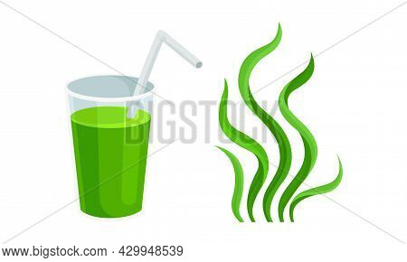 Spirulina Plant Organic Products Set. Healthy Drink And Seaweed Leaves Vector Illustration