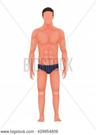 Human Anatomy. Full Lenght Front View Of Standing Man In Underwear. Vector Illustration Of A Man Fig