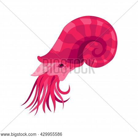 Squid - Sea And Ocean Animal. Fauna Character In Flat Cartoon Style. Vector Cute Colorful Object Iso