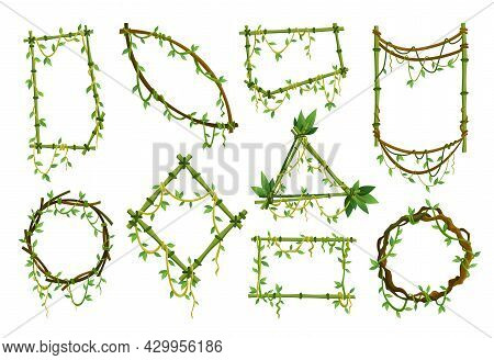 Set Of Tropical Liana Frames, Jungle Plant Branches With Leaves. Tropical Climbing Liana Vine With G