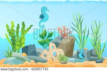 Underwater Ocean Fauna With Sea Horses And Seaweed. Ocean Bottom With Marine Life Reprsentatives. Un
