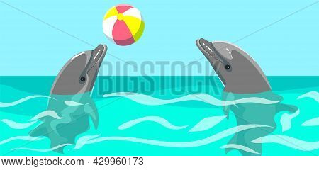 Couple Of Dolphins Is Playing In Pool Together. Dolphins Play With Ball, Do Tricks In Aquarium. Show
