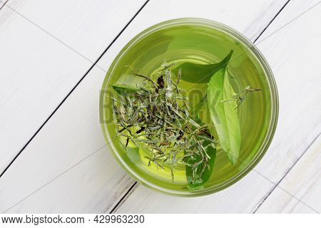 healthy green tea cup with tea leaves. healthy herbal tea, home remedy. beverage for cold flu treament, alternative medicine. natural immunity booster. Beverage for raising immunity concept