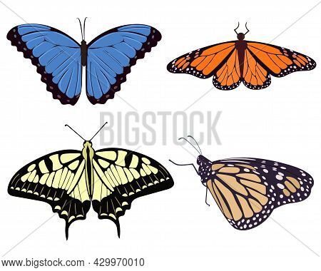 Set Of Realistic Beautiful Butterflies Vector Illustration. Collection Of Moths Yellow Orange Blue A