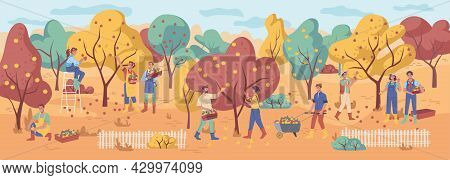 Harvesting People Gather Apple Fruits, Autumn Fall Garden With Orange, Yellow And Green Leaves. Vect