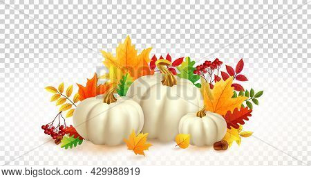 White Pumpkins And Autumn Leaves On Transparent Background. Autumn Festival Invitation. Fall Party T
