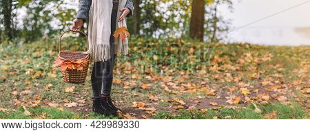 Pretty Woman In Grey Coat, Black Jeans And Beige Scarf Hold In Hand Picnic Basket With Food, Drinks