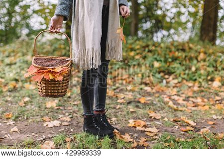 Girl In Grey Coat, Black Jeans And Beige Scarf Hold In Hand Picnic Basket With Food, Beverages And O