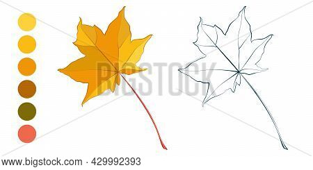 Coloring Sheet With Yellow Autumn Maple Leaf