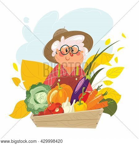Grandma With A Basket Full Of Vegetables. The Happy Old Woman Has Gathered The Harvest. Grandmother
