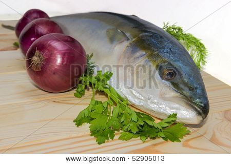 Fresh Fish And Red Onion