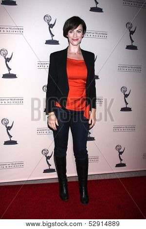 LOS ANGELES - OCT 25:  Maggie Siff at the An Evening with
