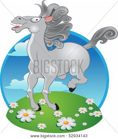 white horse on the color background
