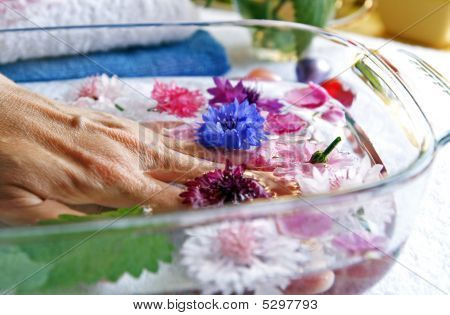 Herbs And Flowers For Woman Hands Care