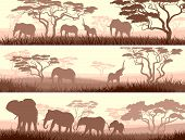 Horizontal abstract banners of wild elephants in African savanna with trees. poster