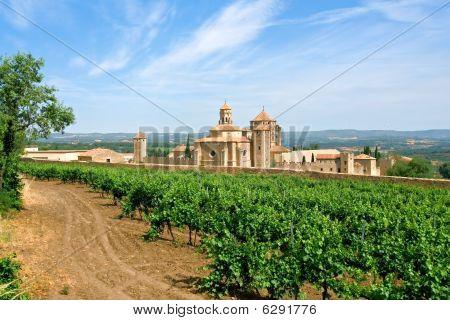Monastery Of Santa Maria De Poblet And Vineyards