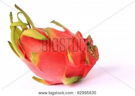 Pitahaya Dragon Fruit