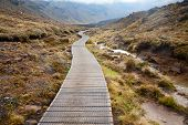 Public tramping track at Tongariro National Park in New Zealand poster
