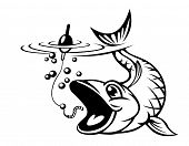 Carp fish catching a hook. Vector illustration poster