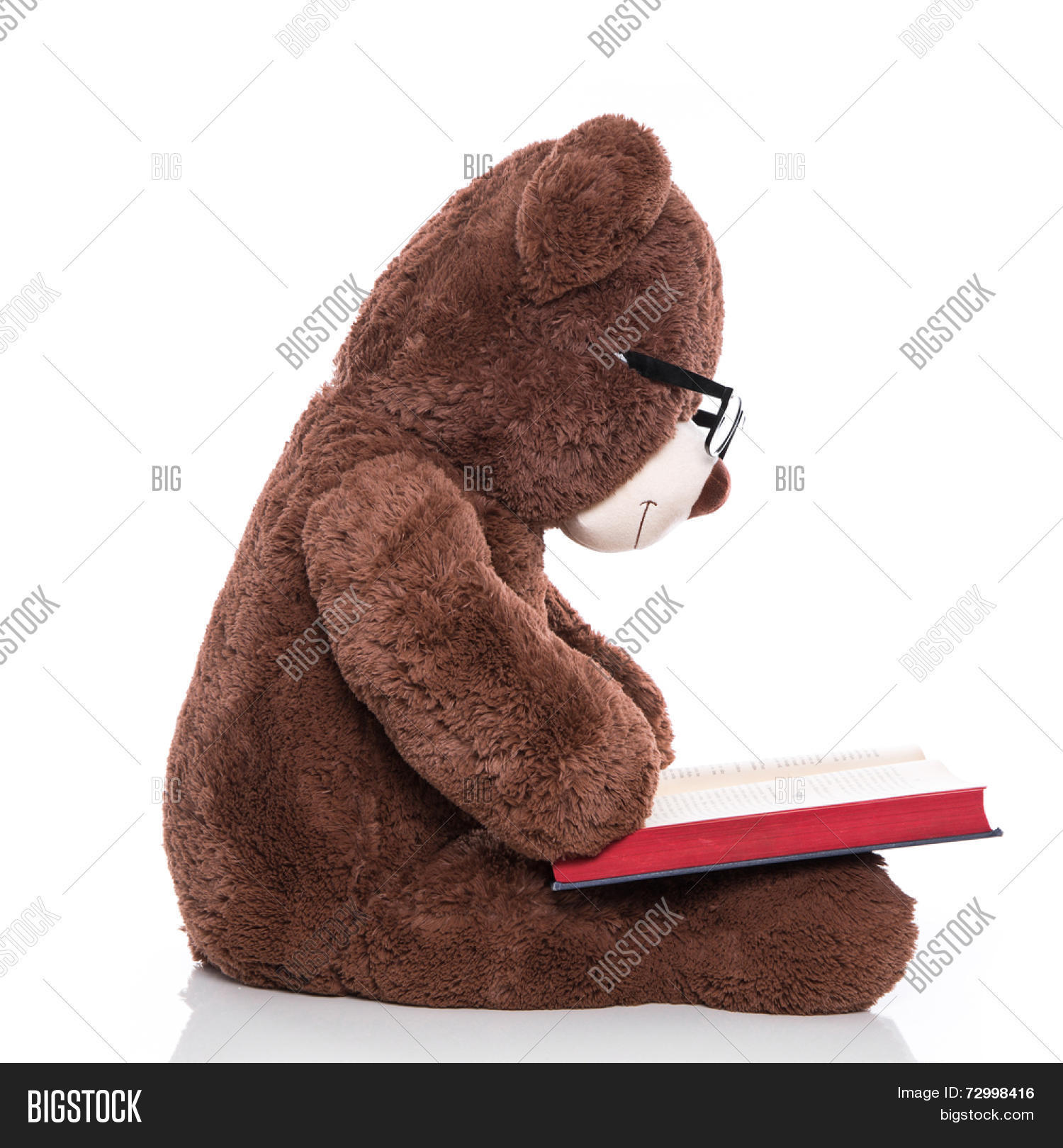 fb418be2b88 Teddy bear wearing glasses and reading a christmas story isolated on white  background