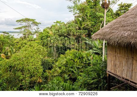 View Of An Eco Loge, Amazon Rainforest, National Park Yasuni, South America