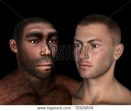 Homo erectus and sapiens comparison - 3D render