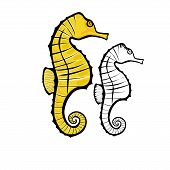 Vector illustration : Seahorse on a white background. poster