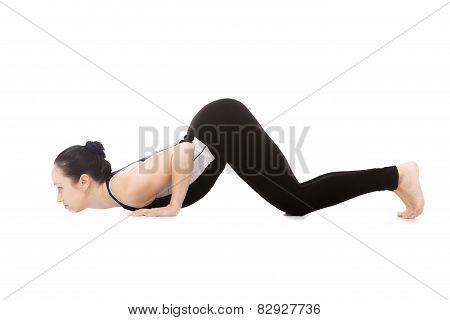 Yogi Female In Yoga Eight-limbed Posture