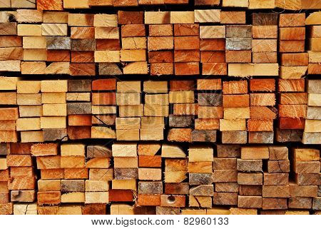 Bundle of cutted timbers