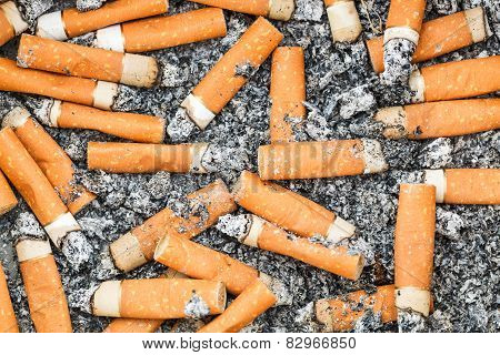 background from many cigarette butts and ash poster