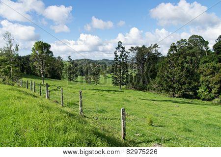 Australian Hinterland