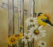 my goldfinch on a fence poster