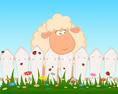 Cartoon smiling sheep after a fence for a design poster
