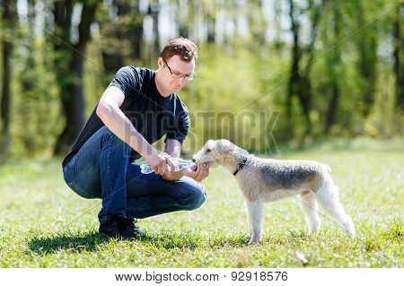 dog drinking water from hands of men