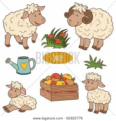 Color Set Of Cute Vector Family Sheep