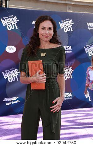 LOS ANGELES - JUN 8:  Minnie Driver at the