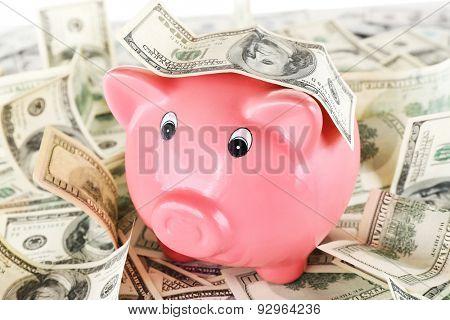 Piggy bank on pile of dollars, closeup