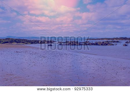 Beautiful beach in the evening North Berwick Scotland