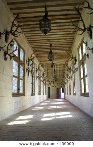 Corridor Displaying Hunting Trophys, Chateau De Chambord, Loire Valley, France