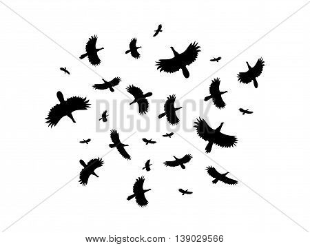 A flock of birds flying in a circle on a white background. Vector illustration.